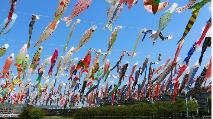 芥川桜堤公園のこいのぼり画像です。