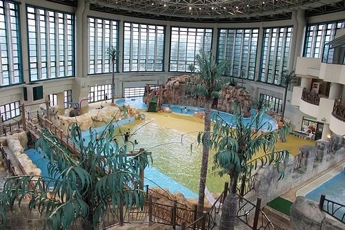 鶴見緑地プールの画像です。
