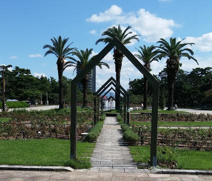 浜寺公園の画像です