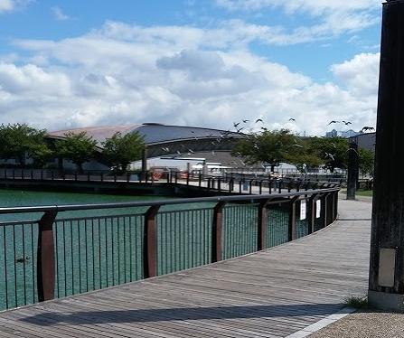 家原大池公園の画像です