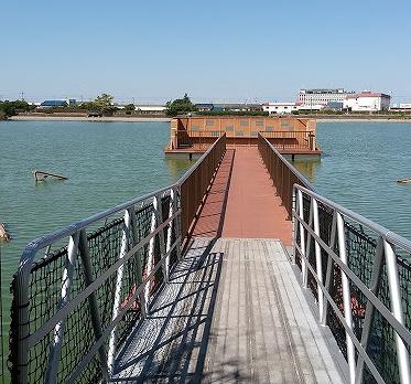 舟渡池公園の画像です