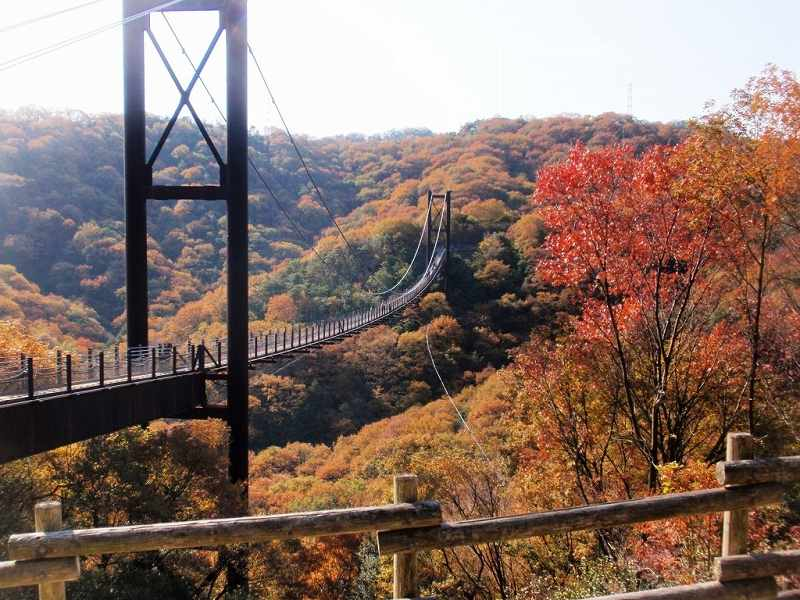 ほしだ園地・星のブランコ(大阪)の画像です。
