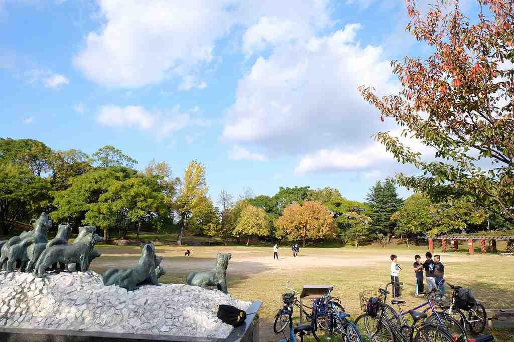 大浜公園の画像です