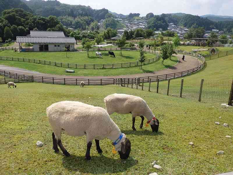 うだ・アニマルパーク(奈良)の画像です。