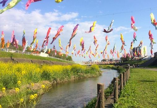 「こどもフェスティバル」鯉のぼりの画像です