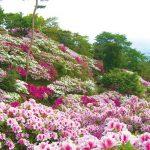 須恵町 皿山公園の画像です
