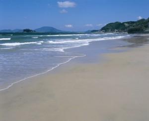 姉子の浜の画像です