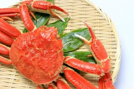 蟹の画像です