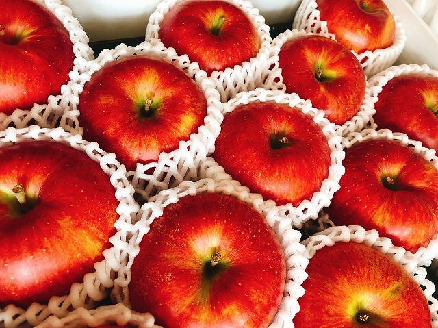 りんごの画像です