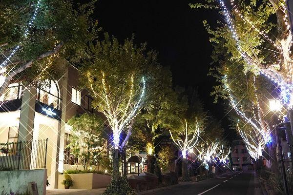 神戸北野クリスマスストリートの画像です