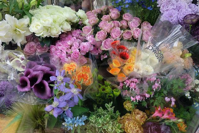 お花の画像です