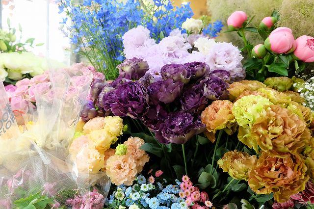 花の画像です