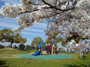 公園の画像です
